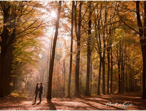Herfst loveshoot in Belgie Tervuren | Indra en Danny