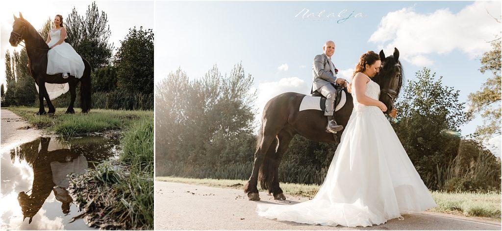 trouwfoto met paard